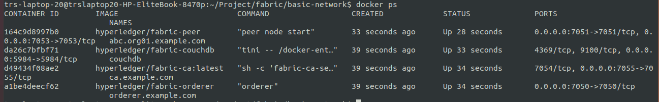 Docker container-Renamed peer